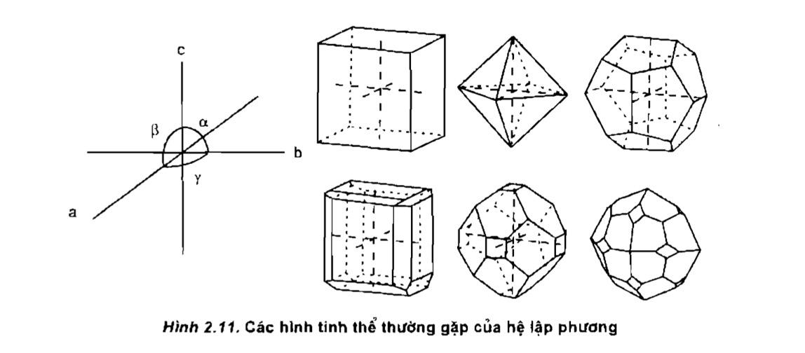 các hình tinh thể thường gặp của hệ lập phương