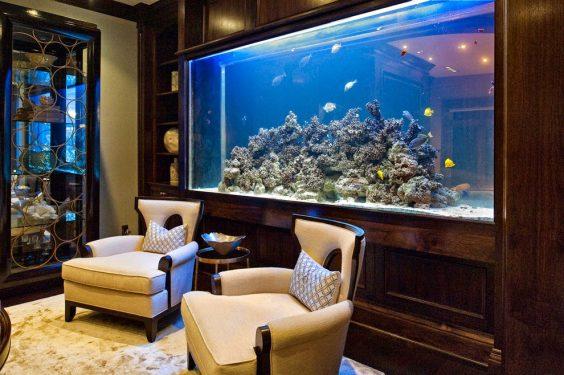 Bể cá phong thủy nên đặt ở hướng suy, không nên đặt ở sau ghế ngồi vì bẻ cá thuộc Thủy, không có tính ổn định.