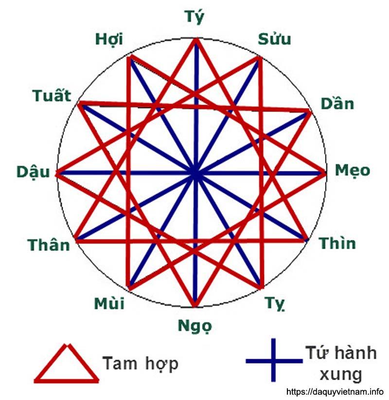 Vòng tròn tam hợp tứ hành xung chọn người hợp tuổi