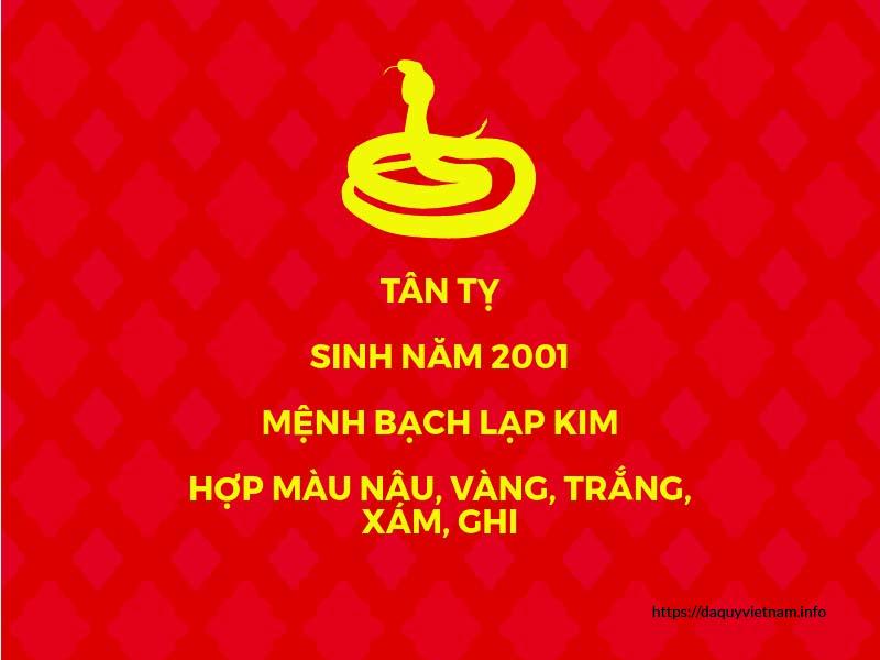 Tuổi Tân Tỵ sinh năm 2001 hợp màu gì