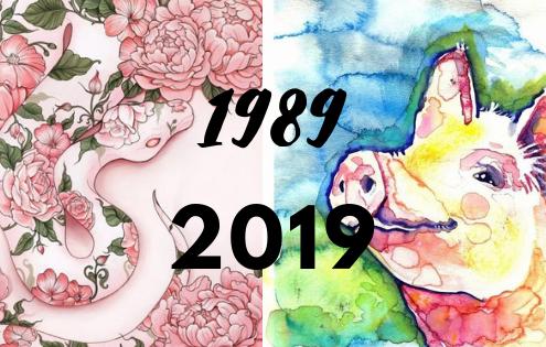 Tử vi tuổi Kỷ Tỵ sinh năm 1989 năm Kỷ Hợi 2019